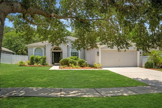 2038 Samantha Lane, Valrico, FL 33594 (MLS #T3312937) :: The Robertson Real Estate Group