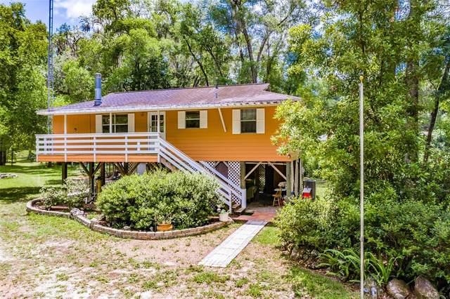 7420 E Azalea Drive, Floral City, FL 34436 (MLS #T3312963) :: The Hesse Team