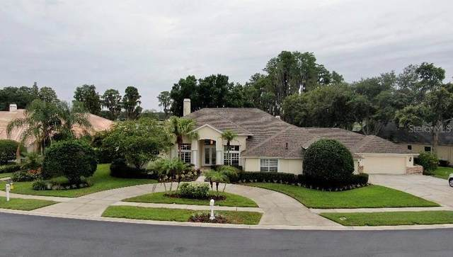 3618 Swans Landing Drive, Land O Lakes, FL 34639 (MLS #T3312969) :: Kelli and Audrey at RE/MAX Tropical Sands