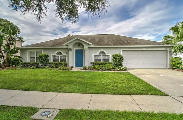 2201 Valrico Heights Boulevard, Valrico, FL 33594 (MLS #T3312973) :: Burwell Real Estate