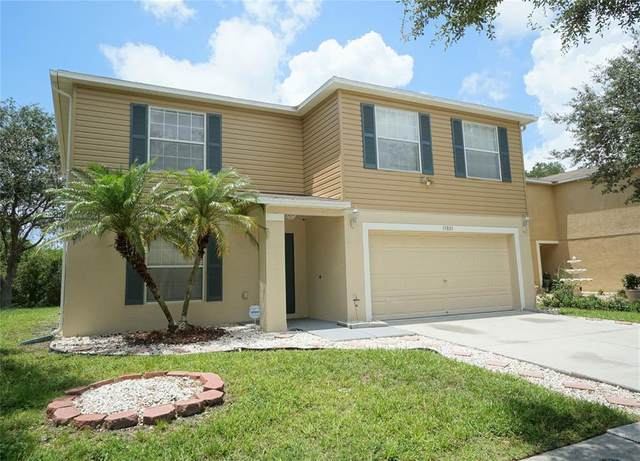 13801 Vanderbilt Road, Odessa, FL 33556 (MLS #T3312974) :: Team Bohannon