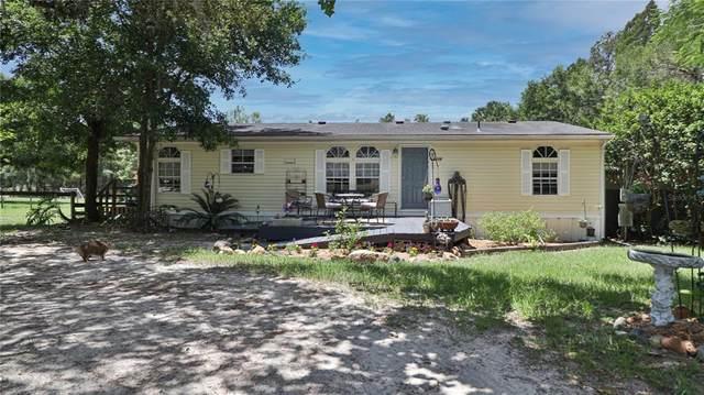 2806 Hideaway Lane, Valrico, FL 33596 (MLS #T3312976) :: The Robertson Real Estate Group