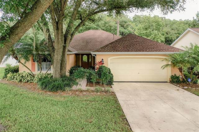 5550 Whitebark Drive, Wesley Chapel, FL 33543 (MLS #T3312982) :: Team Bohannon