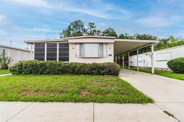 33849 Terrace Boulevard, Wesley Chapel, FL 33543 (MLS #T3312986) :: Zarghami Group