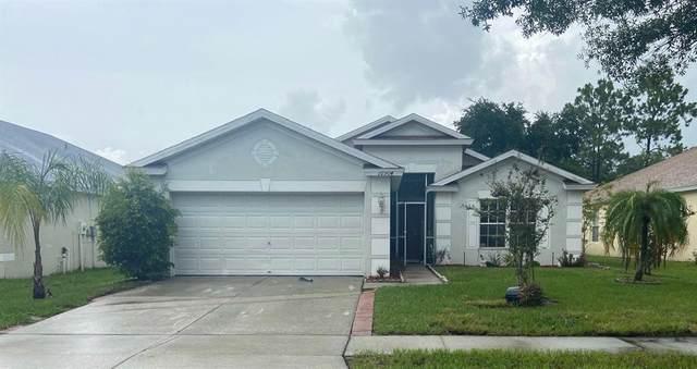 10504 Egret Haven Lane, Riverview, FL 33578 (MLS #T3312990) :: The Nathan Bangs Group
