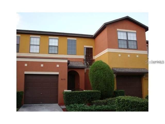 30133 Mossbank Drive, Wesley Chapel, FL 33543 (MLS #T3313013) :: Kelli and Audrey at RE/MAX Tropical Sands
