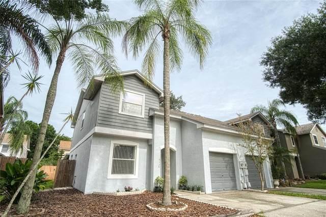 5130 Corvette Drive, Tampa, FL 33624 (MLS #T3313059) :: Team Bohannon