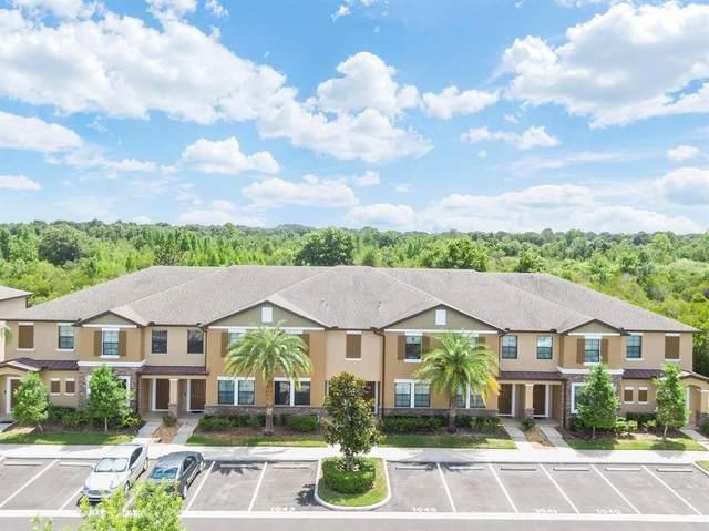 4350 Fennwood Court, Wesley Chapel, FL 33543 (MLS #T3313071) :: RE/MAX Marketing Specialists