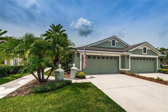 9830 Gingerwood Drive, Tampa, FL 33626 (MLS #T3313082) :: Team Bohannon