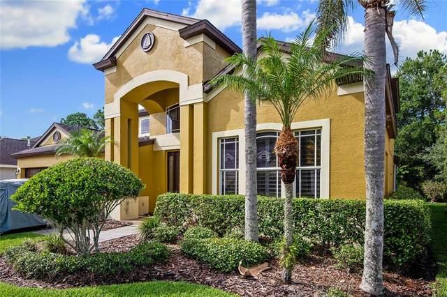 10424 Canary Isle Drive, Tampa, FL 33647 (MLS #T3313083) :: Team Bohannon