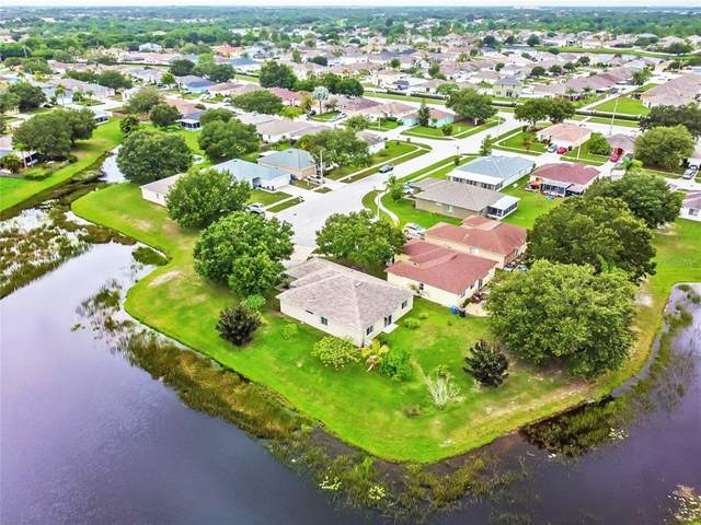 12113 Pepper Creek Court, Riverview, FL 33579 (MLS #T3313088) :: The Nathan Bangs Group