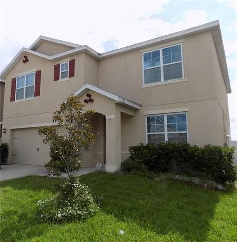 879 Freedom Boulevard, Davenport, FL 33837 (MLS #T3313134) :: Zarghami Group
