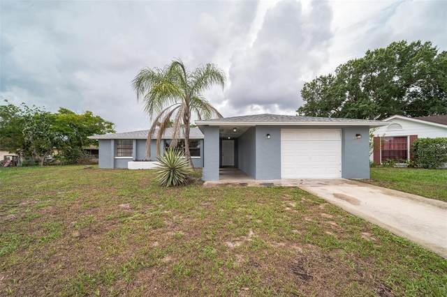 4232 Canandaigua Court, New Port Richey, FL 34653 (MLS #T3313141) :: Griffin Group