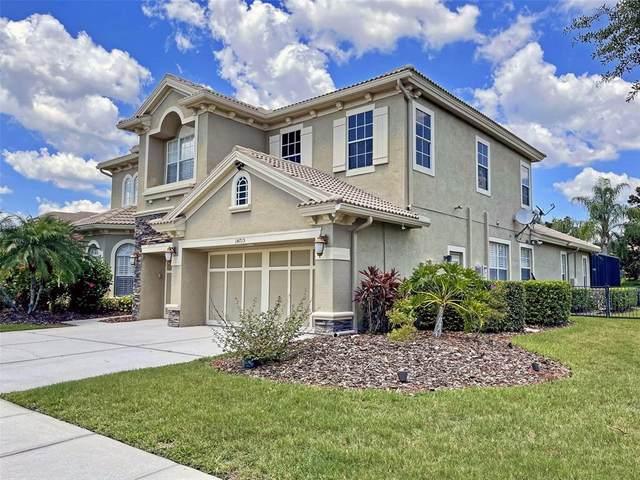 14715 San Marsala Court, Tampa, FL 33626 (MLS #T3313159) :: Delgado Home Team at Keller Williams