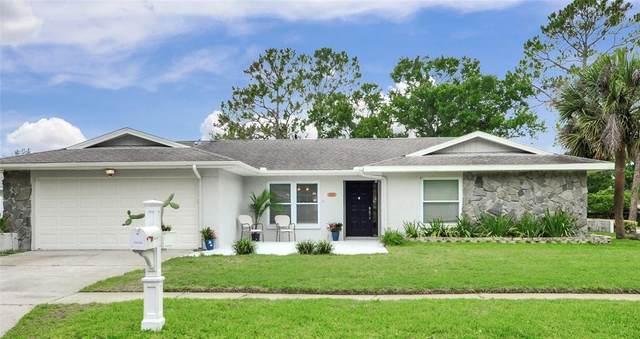 14014 Ellesmere Drive, Tampa, FL 33624 (MLS #T3313162) :: Everlane Realty