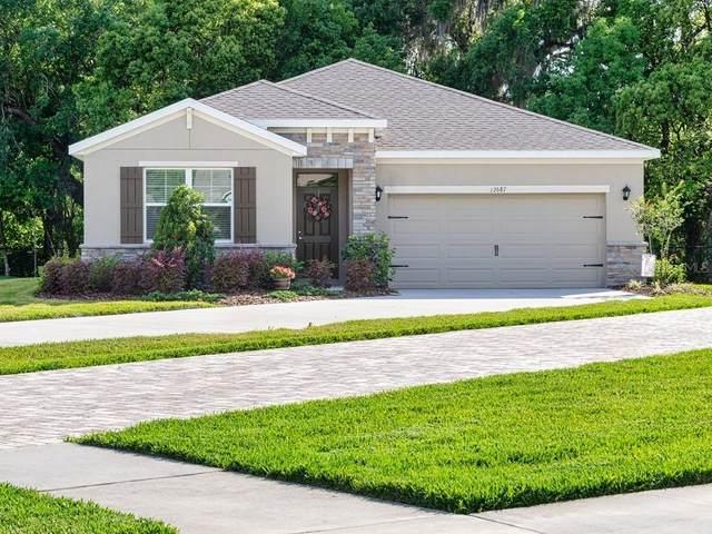 12687 Eastpointe Drive, Dade City, FL 33525 (MLS #T3313169) :: Prestige Home Realty