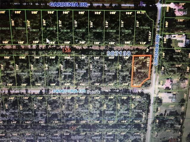 Bl 156 Lt 1 Pandora Drive, Indian Lake Estates, FL 33855 (MLS #T3313187) :: Coldwell Banker Vanguard Realty