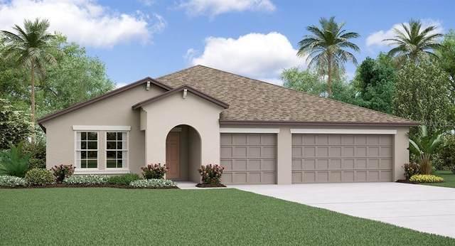 10707 Sage Canyon Drive, Riverview, FL 33578 (MLS #T3313201) :: The Nathan Bangs Group