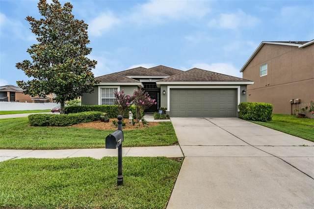 5610 Shasta Daisy Place, Land O Lakes, FL 34639 (MLS #T3313241) :: Alpha Equity Team