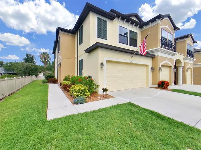 11502 Crowned Sparrow Lane, Tampa, FL 33626 (MLS #T3313268) :: The Hesse Team