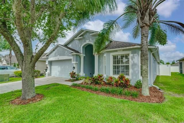 4151 Medbury Drive, Wesley Chapel, FL 33543 (MLS #T3313270) :: Team Bohannon