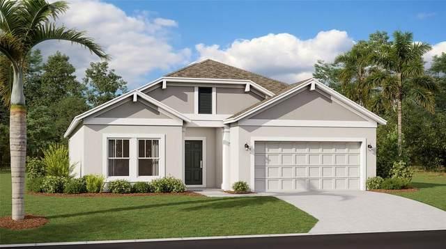 33506 Sky Blossom Circle, Leesburg, FL 34788 (MLS #T3313275) :: Gate Arty & the Group - Keller Williams Realty Smart