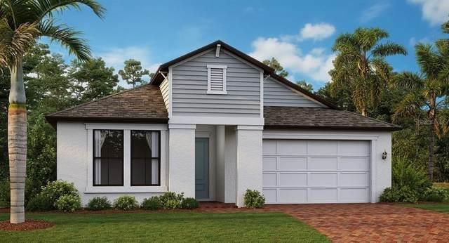 9667 Little Bluestem Drive, Land O Lakes, FL 34637 (MLS #T3313283) :: Zarghami Group
