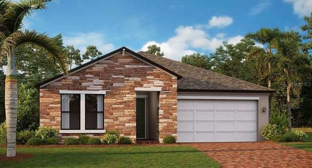 9637 Little Bluestem Drive, Land O Lakes, FL 34638 (MLS #T3313287) :: Zarghami Group