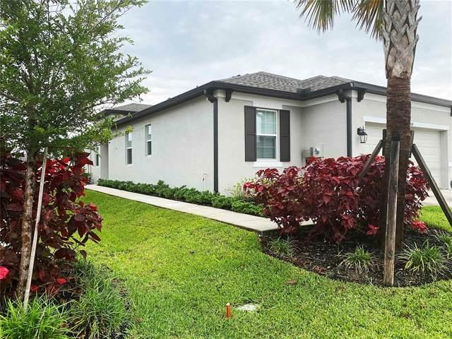 8524 Cache Drive, Sarasota, FL 34240 (MLS #T3313289) :: Your Florida House Team