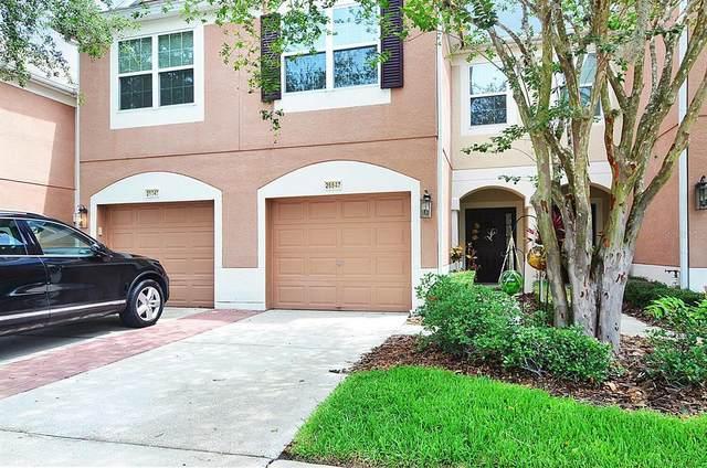 26647 Castleview Way, Wesley Chapel, FL 33544 (MLS #T3313307) :: Alpha Equity Team