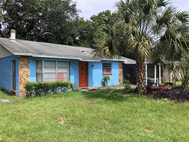 6502 Julie Street, Tampa, FL 33610 (MLS #T3313310) :: The Robertson Real Estate Group