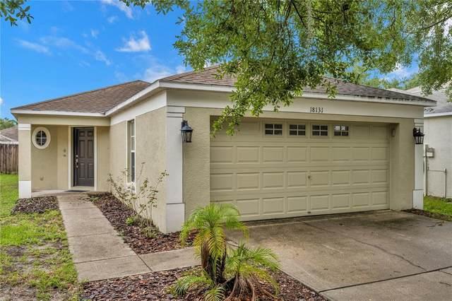 18131 Lembrecht Way, Tampa, FL 33647 (MLS #T3313320) :: Team Bohannon