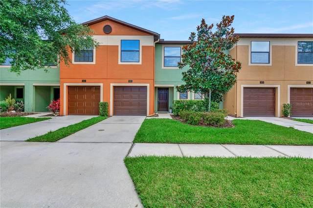 2421 Hibiscus Bay Lane, Brandon, FL 33511 (MLS #T3313324) :: Griffin Group