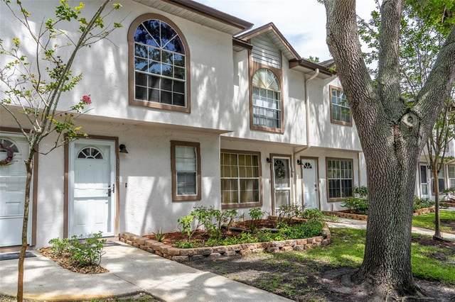 3392 Fox Hunt Drive, Palm Harbor, FL 34683 (MLS #T3313362) :: RE/MAX Local Expert