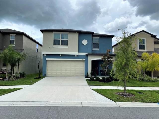 7310 Tiger Trail Ct, Sun City Center, FL 33573 (MLS #T3313390) :: Burwell Real Estate