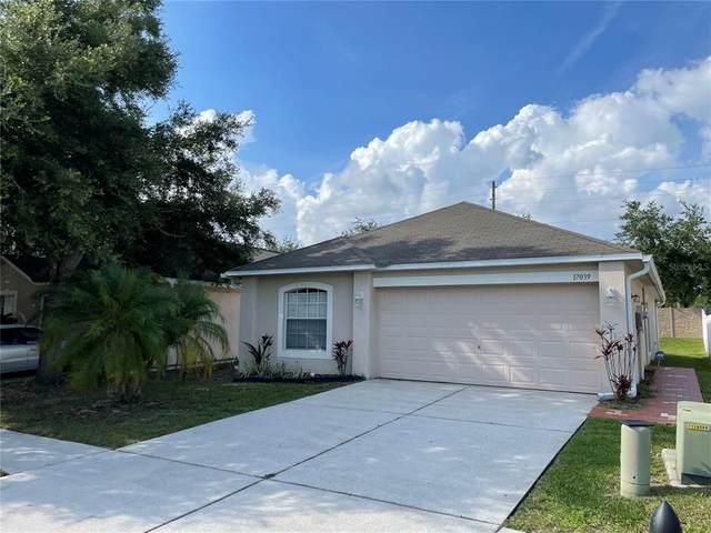 17039 Ongar Court, Land O Lakes, FL 34638 (MLS #T3313423) :: The Robertson Real Estate Group