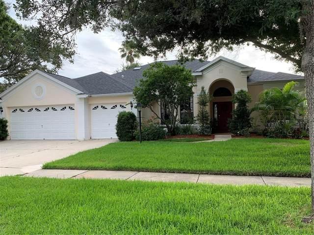 12424 Seabrook Drive, Tampa, FL 33626 (MLS #T3313446) :: Team Bohannon