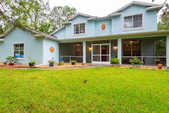26438 Green Willow Run, Wesley Chapel, FL 33544 (MLS #T3313460) :: Vacasa Real Estate