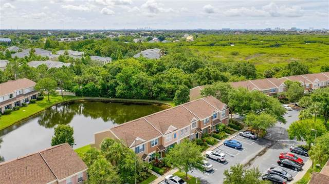 6007 Bayside Key Drive, Tampa, FL 33615 (MLS #T3313463) :: Team Bohannon