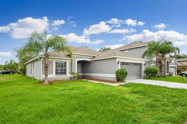 31407 Golden Gate Drive, Wesley Chapel, FL 33545 (MLS #T3313465) :: Team Bohannon
