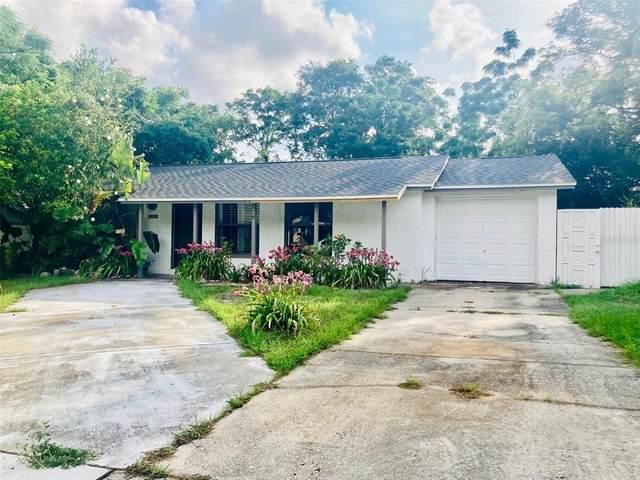 1200 Jadewood Avenue, Clearwater, FL 33759 (MLS #T3313470) :: Keller Williams Realty Select