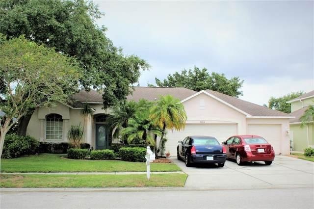 9204 Waterbird Drive, Riverview, FL 33578 (MLS #T3313474) :: Team Bohannon