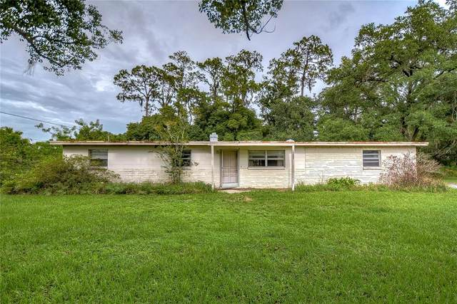 2719 N Dover Road, Dover, FL 33527 (MLS #T3313481) :: Kelli and Audrey at RE/MAX Tropical Sands