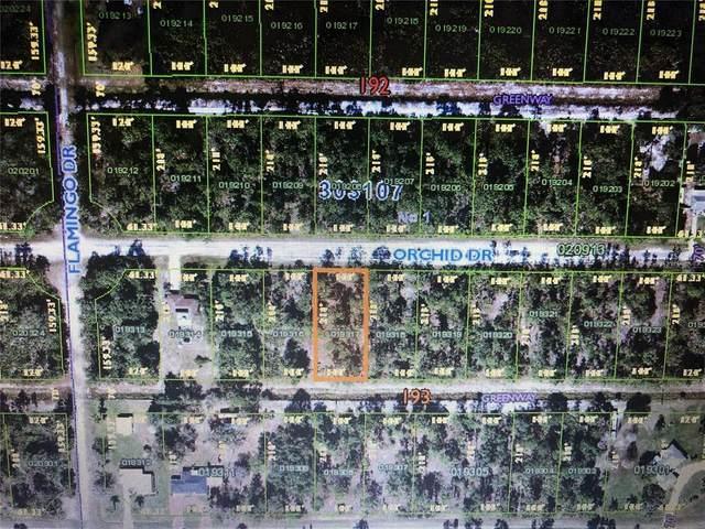 Bl 193 Lt 17 Orchid Drive, Indian Lake Estates, FL 33855 (MLS #T3313519) :: Coldwell Banker Vanguard Realty