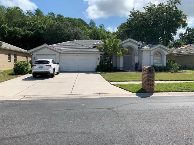 1277 Kings Way Lane, Tarpon Springs, FL 34688 (MLS #T3313523) :: Vacasa Real Estate