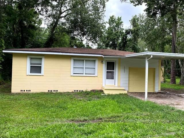 10401 Shalimar Street, New Port Richey, FL 34654 (MLS #T3313534) :: Frankenstein Home Team