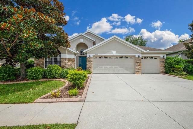 6935 Runner Oak Drive, Wesley Chapel, FL 33545 (MLS #T3313535) :: Team Bohannon