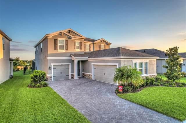 4855 Ballantrae Boulevard, Land O Lakes, FL 34638 (MLS #T3313543) :: Vacasa Real Estate