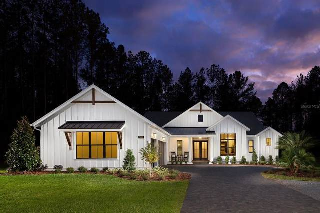 19426 Sheltered Hill Drive, Brooksville, FL 34601 (MLS #T3313548) :: The Paxton Group