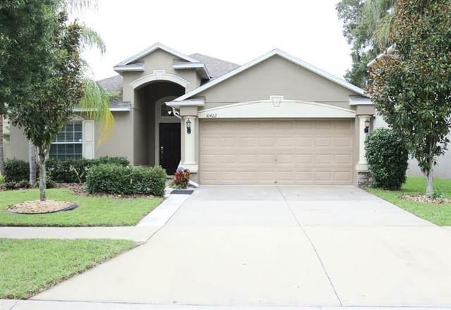 10422 Summer Azure Drive, Riverview, FL 33578 (MLS #T3313560) :: Team Bohannon